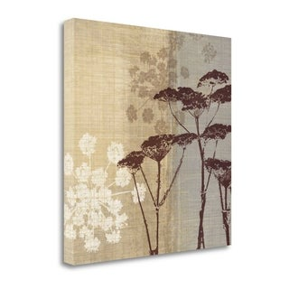 Lace II By Tandi Venter,  Gallery Wrap Canvas
