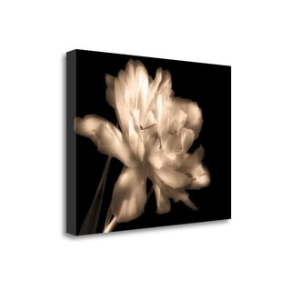 Double Dappled II By Charles Britt,  Gallery Wrap Canvas