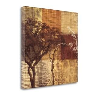 Safari III By Tandi Venter,  Gallery Wrap Canvas