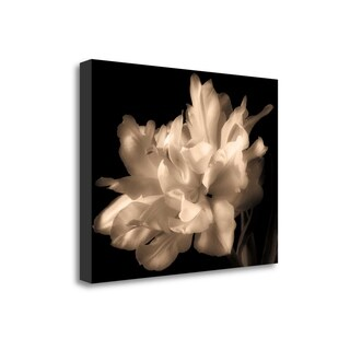 Double Dappled I By Charles Britt,  Gallery Wrap Canvas