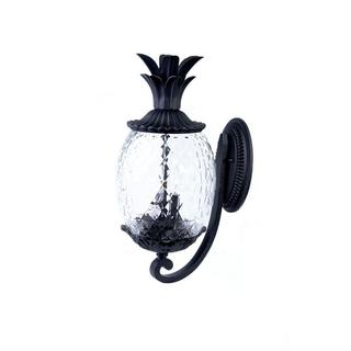 Acclaim Lanai Collection 2-Light Outdoor Matte Black Wall Lantern