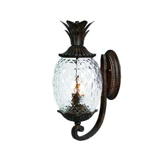 Acclaim Lanai Collection 2-Light Outdoor Black Coral Wall Lantern