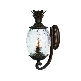 Acclaim Lanai Collection 2-Light Outdoor Black Coral Wall Lantern
