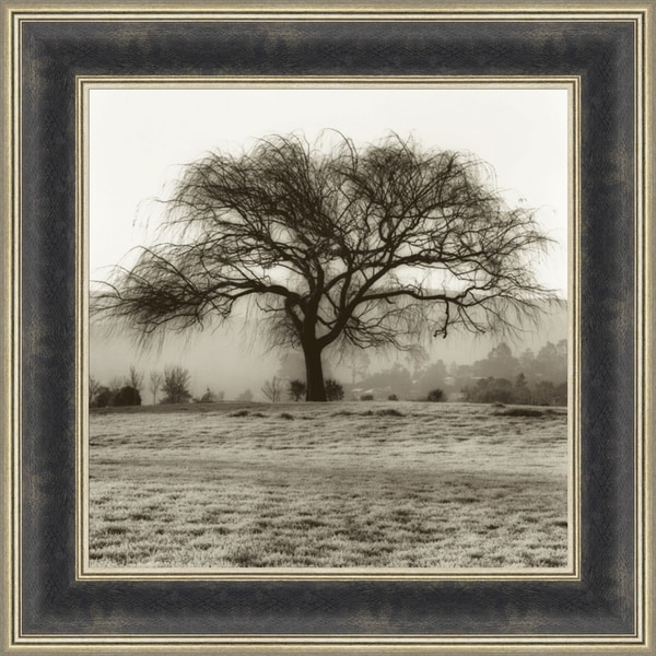 Shop Willow Tree By Alan Blaustein, Wall Art - Free Shipping Today ...