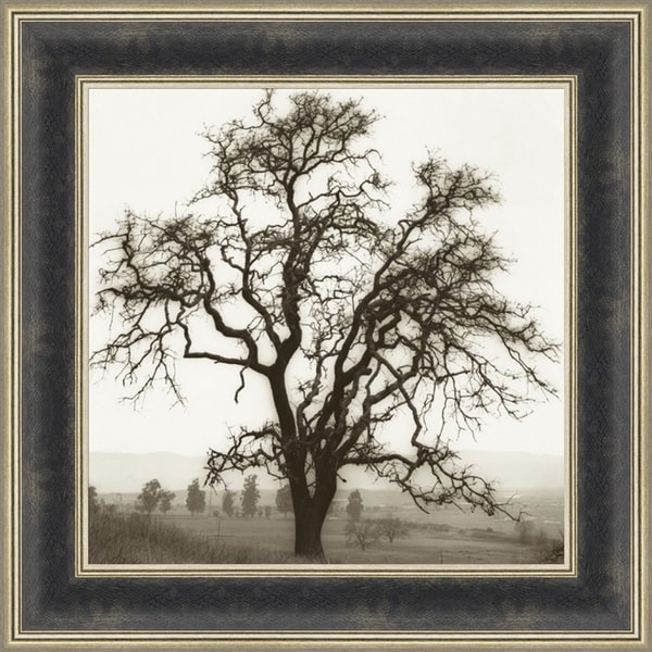 Country Oak Tree By Alan Blaustein, Wall Art