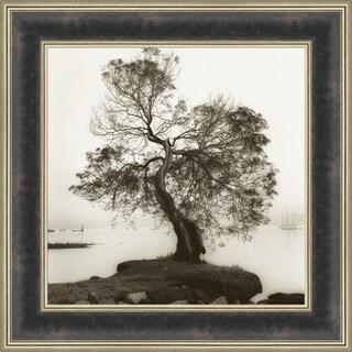 Coast Oak Tree By Alan Blaustein, Wall Art