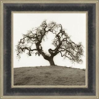 Hillside Oak Tree By Alan Blaustein, Wall Art
