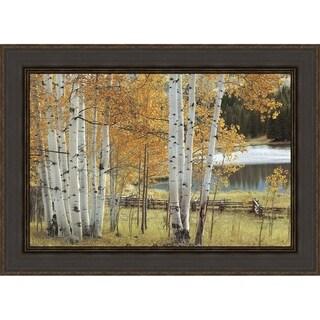 Birch Beauty By Mike Jones Framed Photographic Print, Fine Art Print