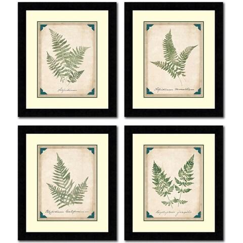 Vintage Ferns Set Of Four Framed Painting Prints