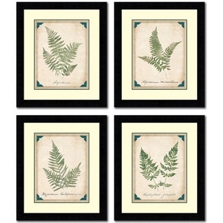 Vintage Ferns Set Of Four Framed Painting Prints