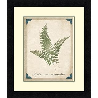 Vintage Ferns X, Fine Art Print