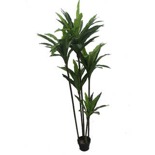 Jeco 74-inch Chinese Slim-body Tree Silk Plant
