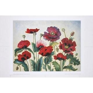 Contemporary Poppies Fine Art Print by Alexandra Churchill