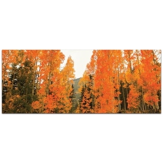 Aspen Fire - contemporary