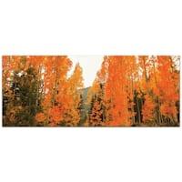 Aspen Fire - contemporary