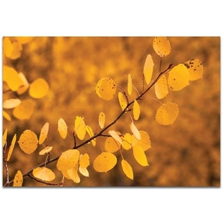 Yellow Leaves - contemporary