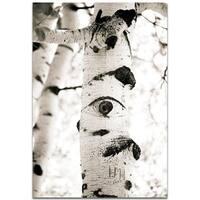 Aspen Eyes - contemporary