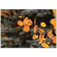 Autumn Branch - contemporary