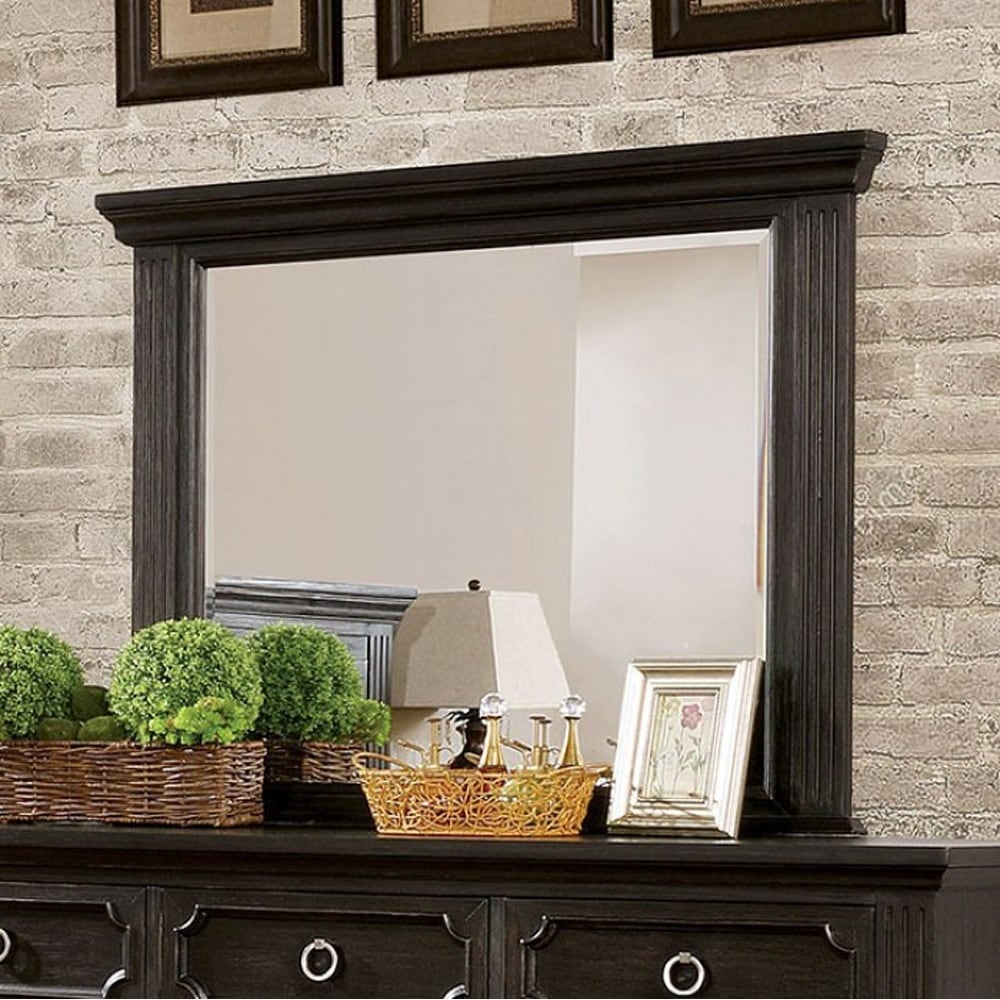 Roisin Transitional Style Mirror, Wire-Brushed Black