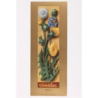 Dandelion Wall Art Print by Anne of Burgundy