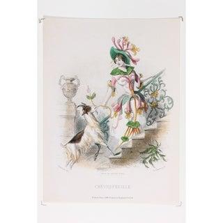 Les Fleurs Animées Chevrefeuille Fine Art Print by J J Grandville