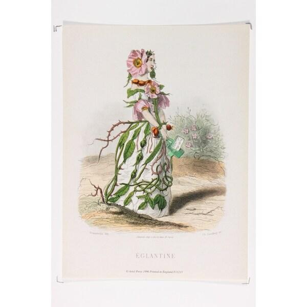 Les Fleurs Animées Eglantine Fine Art Print by J J Grandville
