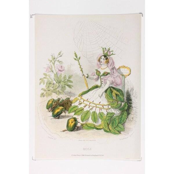 Les Fleurs Animées Rose Fine Art Print by J J Grandville