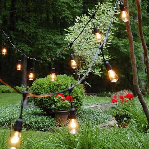 Electric String Lights- Commercial Grade Edison Style (12 Lights)