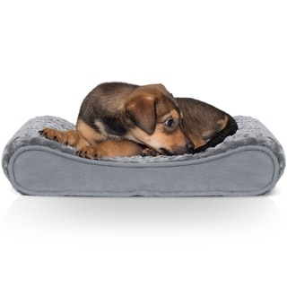 Outstanding Buy Dog Beds Online At Overstock Our Best Dog Beds Short Links Chair Design For Home Short Linksinfo