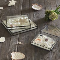 INK+IVY Olympia Black Glass Boxes Set Of 3