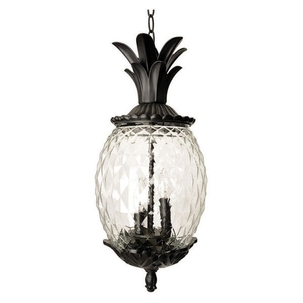 Acclaim Lighting Lanai Collection Hanging Lantern 3-Light Outdoor Black Coral Light Fixture. Opens flyout.
