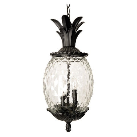 Acclaim Lighting Lanai Collection Hanging Lantern 3-Light Outdoor Black Coral Light Fixture