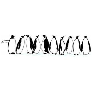 Penguins Animals Bedroom Picture Art Item Vinyl Wall Decal, 16-Inch x 26-Inch, Black