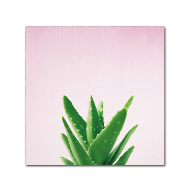 Felicity Bradley 'Succulent Simplicity V on Pink' Canvas Art