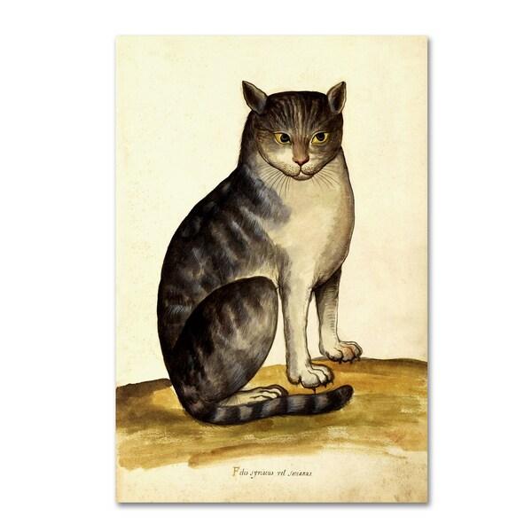 Vintage Lavoie 'Felis Syriacus Ulisse' Canvas Art