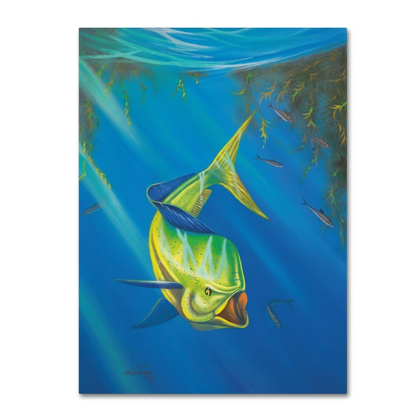 Geno Peoples 'Mahi Mahi' Canvas Art