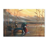 Geno Peoples 'Wood Ducks' Canvas Art