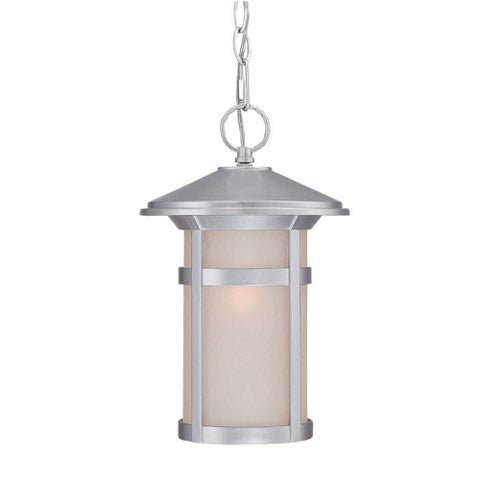 Acclaim Lighting Phoenix Collection Hanging Lantern 1-Light Outdoor Brushed Silver Light Fixture