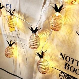 Waterproof Vintage Pineapple Small LED String Light (1M/2M)
