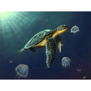 """""""Turtle Delight"""" by Jeremy Lee, Canvas Giclee Wall Art"""