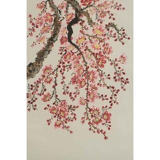 """Cherry Blossoms I"" by Jamaliah Morais, Canvas Giclee Wall Art"