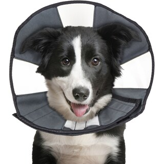ZenPet Soft Recovery Cone-Large