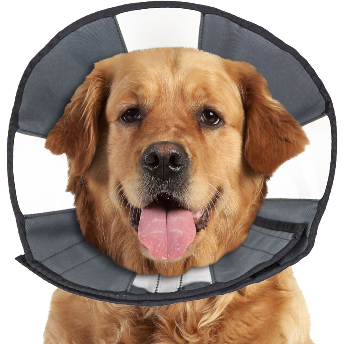 Foster & Smith ZenPet Soft Recovery Cone-Extra Large (Ext...