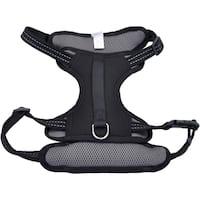 Coastal Reflective Control Handle Harness-Black Large