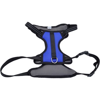 Coastal Reflective Control Handle Harness-Blue Large