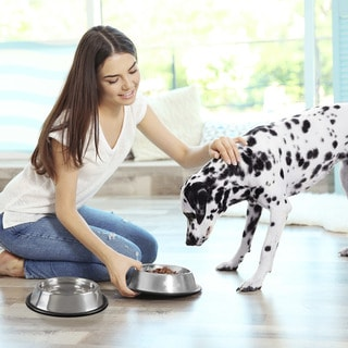 Stainless Steel Pet Bowls with Non Slip Rubber Bottom Set of 2 PETMAKER