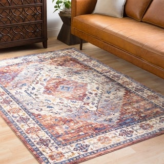 Ekaterine Classic Oriental Distressed Burnt Orange Area Rug - 2' x 3'