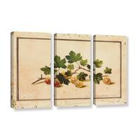 Fedor Petrovich Tolstoy 'Gooseberries' 3-piece Gallery-wrapped Canvas Wall Art Set