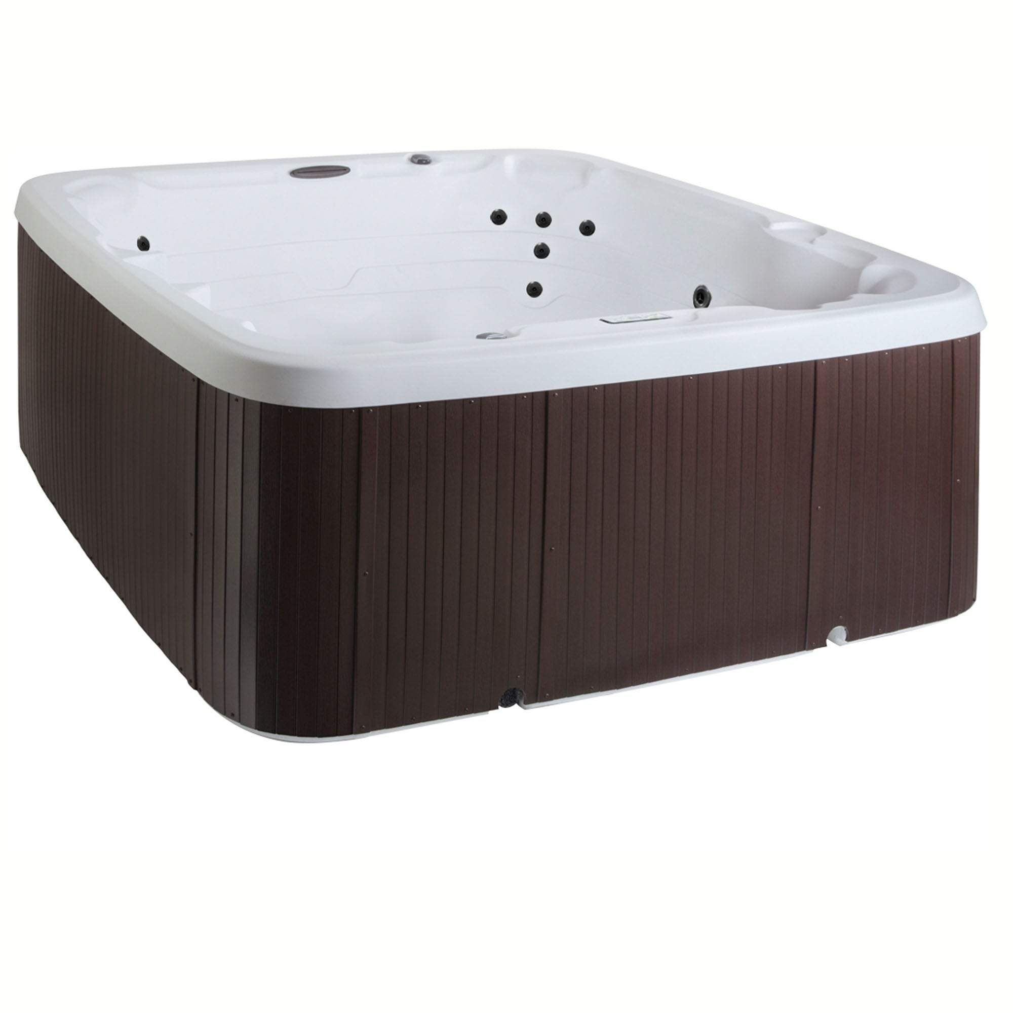 Lifesmart LS450DX 6-Person 22-Jet Plug & Play Spa
