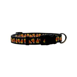 Yellow Dog Orion LED Collar - Candy Corn